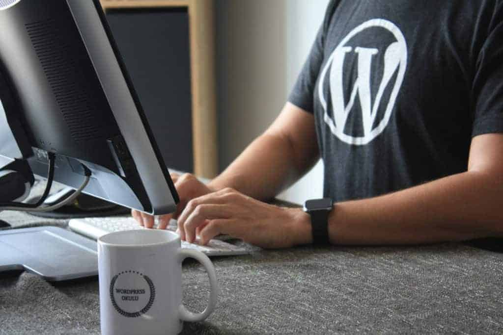 wordpress worker at laptop